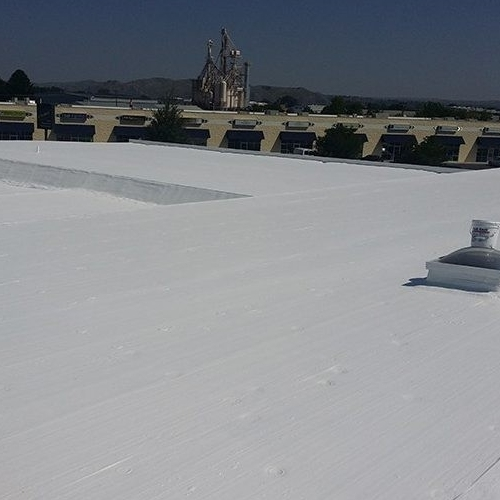 A TPO Roof